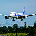 787_Dreamliner, Disruptive_innovation, Boeing, Andrew_Stein, MBA, Chief_Marketing_Officer, Global_CMO, VP, Marketing_Strategy, Operations, Outside_Director, Board_Member, Technology, Services, Energy, Oil_&_Gas, Geologist, Mining, SteinVox, Design_Thinking